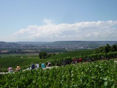 Épernay : pique-nique dans les vignes